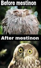 Before mestinon Owl with closed eyes. After mestinon owl with alert eyes